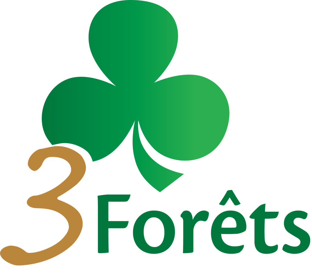 Logo 3FORETS
