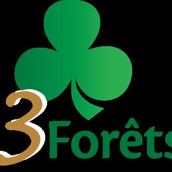 Logo 3FORETS